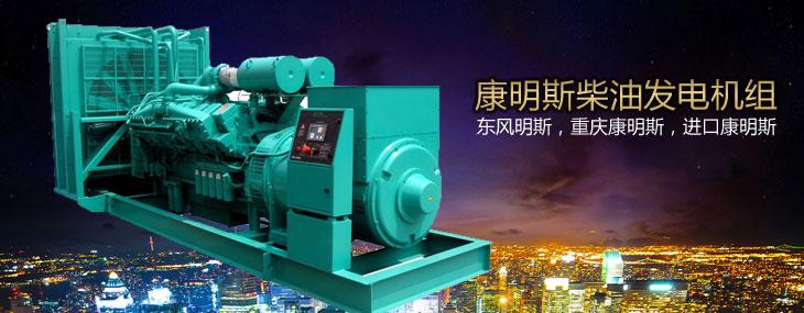 珀金斯发电机组使用珀金斯柴油机(又称劳斯莱斯)为动力,珀金斯创立
